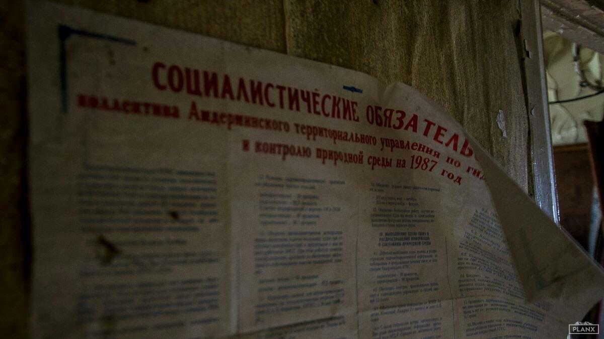 planx.media, Сергей Северин